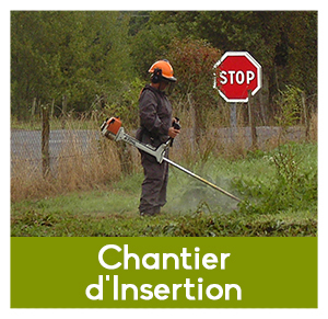 Chantier d'insertion